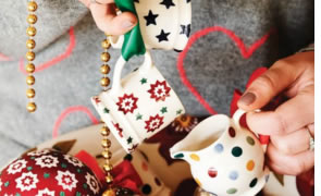 Emma Bridgewater Holiday On Sale