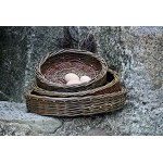 Willow Tray Baskets Set/3