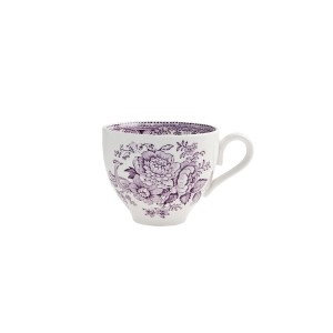 Plum Asiatic Pheasant Tea Cup & Saucer