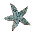 Mediterraneo Large Starfish