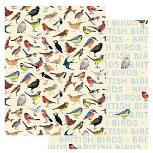 British Birds Gift Wrap Pack