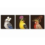 Songbird Coasters