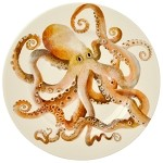 Octopus 8.5 inch Lunch Plate