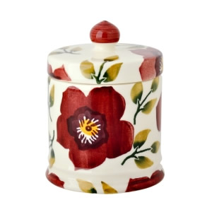 Retired Emma Bridgewater Fall and Holiday