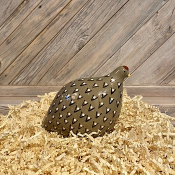 French Quail Grey Spotted Black-Small