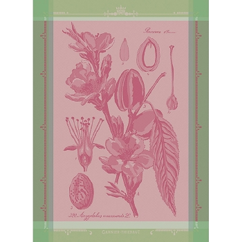 Fleurs D'Amandier Rose Kitchen Towel 22