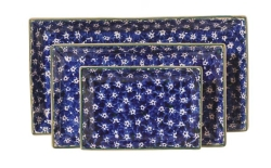 Blue Lawn Rectangular Dish Set/3