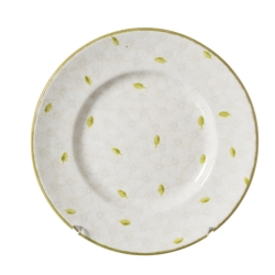 Lawn Pattern White Lunch Plate