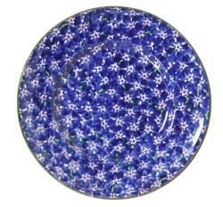 Dark Blue Lawn Lunch Plate