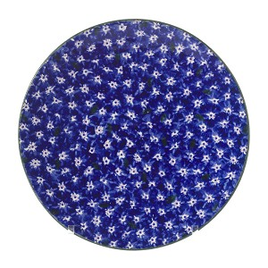 Dark Blue Lawn Everyday Plate